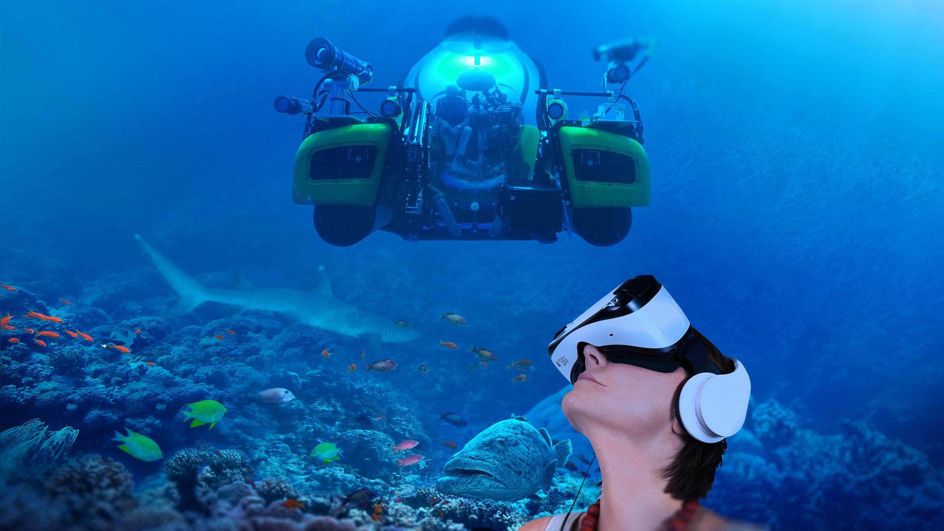 David attenborough 39 s great barrier reef vr dive for Virtual reality fishing